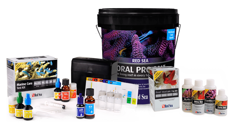 red sea reef starter kit Fully matured aquarium reef system in only 21 days