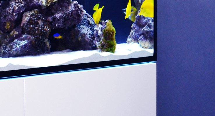 Red Rea reefer marine aquarium system