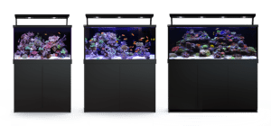 Red Sea MAX S Marine Aquarium Systems